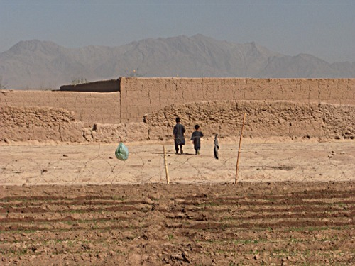 Children in Tarin Kowt, Uruzgan