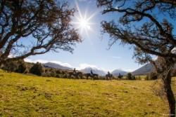 Reizen en vakantie in Nieuw-Zeeland