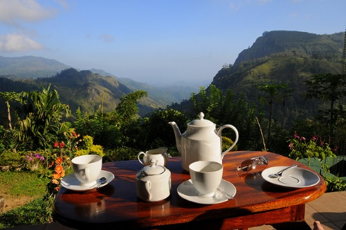 Guesthouse in Sri Lanka