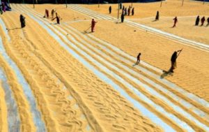 Reizen en vakantie in Bangladesh