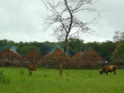 Reizen en vakantie Guinee-Bissau