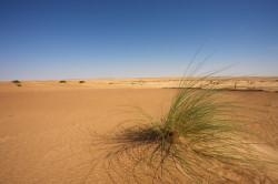 Reizen en vakantie in Mauritanië