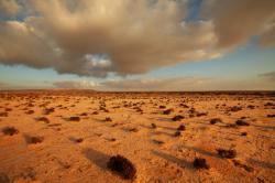 Reizen en vakantie in de Westelijke Sahara