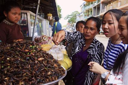 Gefrituurde kakkerlakken in Cambodja