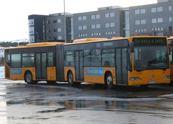 Reizen met de bus in IJsland