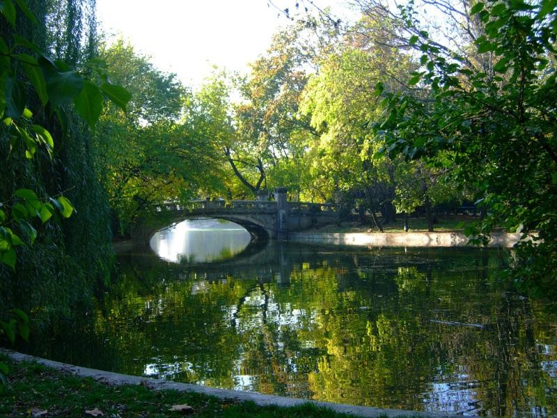 Brug in Cismigiu Park, Boekarest