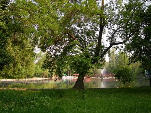 Cismigiu Park in Boekarest