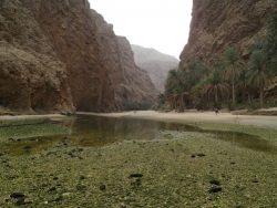 Hoogtepunten vakantie in Oman